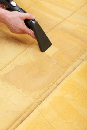 Brisbane Carpet Cleaning Tile Upholstery Leather