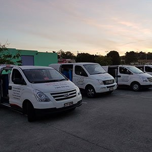 Three Who Who carpet Cleaning and Pest Management vans standing in a line
