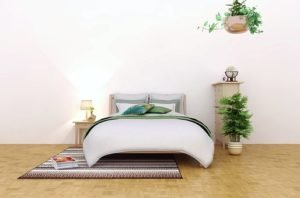 Mattress cleaning Brisbane- White room with queen size bed and green plants