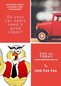 Infographic with owl logo and car seat cleaning details - Who Who Carpet Cleaning and Pest Management