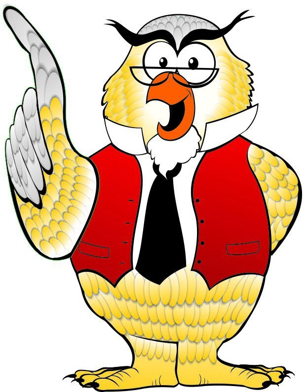 Yellow owl with red vest who who carpet cleaning logo