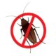 Stop sign on cockroach illustration- Pest control in brisbane