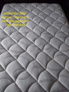 White mattress cleaned by Who Who Carpet Cleaning