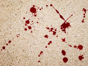 blood-carpet--blood-and-carpet-film