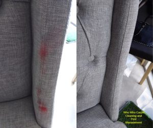 Lipstick stains on Grey Upholstery before and after - Who Who Upholstery Cleaning Brisbane